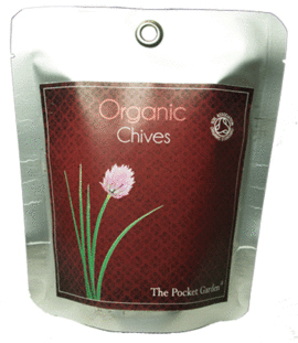 ORGANIC CHIVES (CEBOLLINO CHINO) -THE POCKET GARDEN