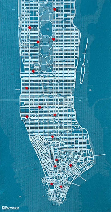 PIN CITY NEW YORK [BLUE LIGHT] WALL MAP DIARY -PALOMAR