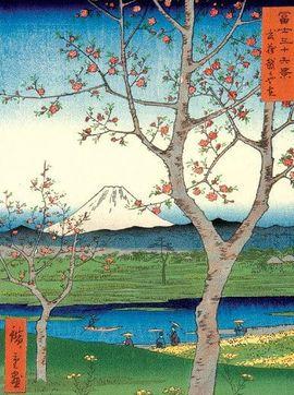 JAPANESE VIEWS [ESTOIG]