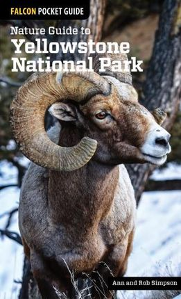 YELLOWSTONE NATIONAL PARK, NATURE GUIDE TO -FALCON POCKET GUIDE
