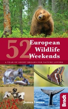 52 EUROPEAN WILDLIFE WEEKENDS -WILDLIFE GUIDES -BRADT