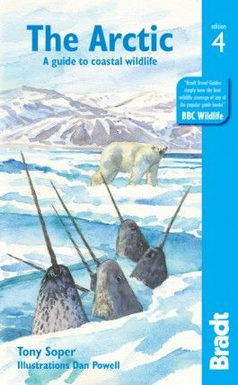 THE ARCTIC -BRADT