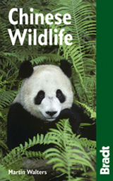 CHINESE WILDLIFE -WILDLIFE GUIDES -BRADT