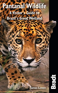 PANTANAL WILDLIFE -BRADT