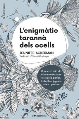 ENIGMÀTIC TARANNÀ DELS OCELLS, L'
