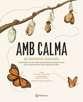 AMB CALMA