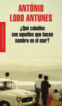 QUE CABALLOS SON AQUELLOS QUE HACEN SOMBRA EN EL MAR?