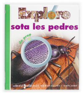 EXPLORO SOTA LES PEDRES DE PROP