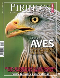 11. ESPECIAL: GUIA DE AVES DEL PIRINEO -EL MUNDO DE LOS PIRINEOS -REVISTA