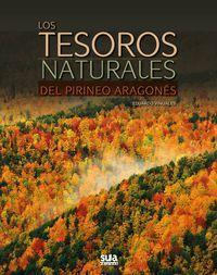 TESOROS NATURALES DEL PIRINEO ARAGONÉS, LOS