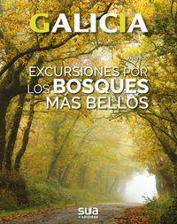 03. GALICIA. EXCURSIONES POR LOS BOSQUES MAS BELLOS -SUA