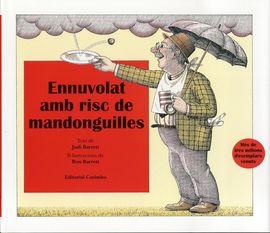 ENNUVOLAT AMB RISC DE MANDONGUILLES