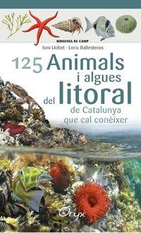 125 ANIMALS I ALGUES DEL LITORAL [ACORDIO] -MINIGUIA DE CAMP -ORYX