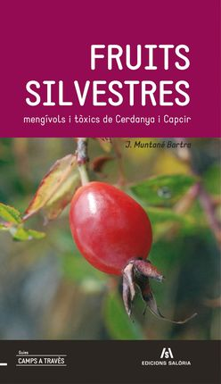 FRUITS SILVESTRES