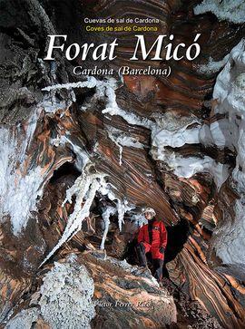 FORAT MICO. COVES DE SAL DE CARDONA (BARCELONA)