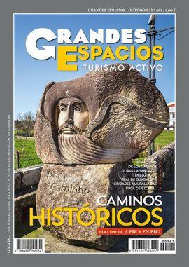 261 GRANDES ESPACIOS -REVISTA